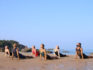 6 Day Retreat on Mindfulness of Emotions in Transition and Life Changes with Yoga in Agonda, Goa