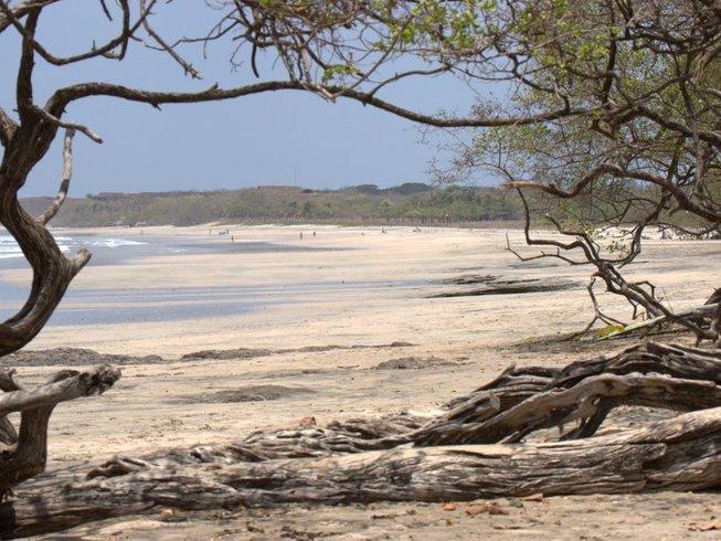6 Day Costa Rica Beginner Surf Camp