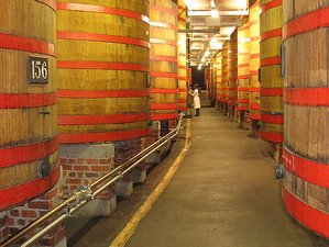 10 Days Beer and Gourmet Tour in Belgium by Bier Mania