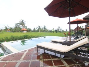8 Days Wellness and Tour Yoga Retreat in Bali, Indonesia