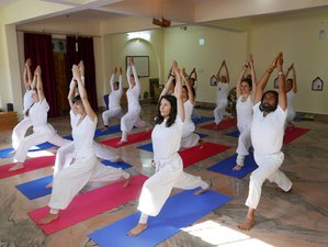 26 Days 300-Hour Yoga Teacher Training and Yoga Therapy in Rishikesh, India