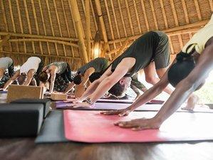 4 Days Luxury Detox Yoga Retreat in Bali, Indonesia