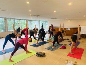 22 Day Luxuries 200 Hour Yoga Teacher Training in Himalaya
