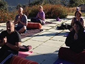 15 Days Holy Himalayas and Adventure Yoga Retreat in Dunagiri, India