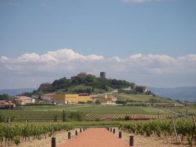 6 Days Luxury North Spain Wine Tour
