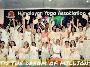 Self-Paced 200-Hour Online Hatha, Vinyasa Flow, and Ashtanga-Based Yoga Teacher Training Course