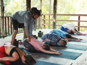 28 Tage 200-Stunden Multi Stil Vinyasa, Hatha und Bhakti Yogalehrer Ausbildung in Chiang Mai