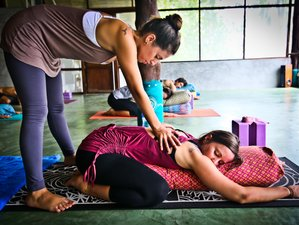 29 Day 200-Hours Alignment & Therapeutic Yoga Teacher Training Course in Koh Phangan, Surat Thani