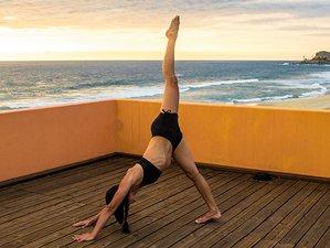 5 jours en stage de yoga énergisant à La Paz, Mexique