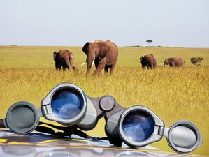 2 Days Outstanding Safari in Kruger National Park, South Africa
