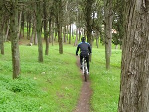 8 Days Mountain Biking and Yoga Holiday Lisbon, Portugal