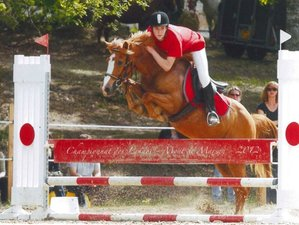 8 Days Adapted Jumping Training with Leisure Riding in Nouvelle Aquitaine, France