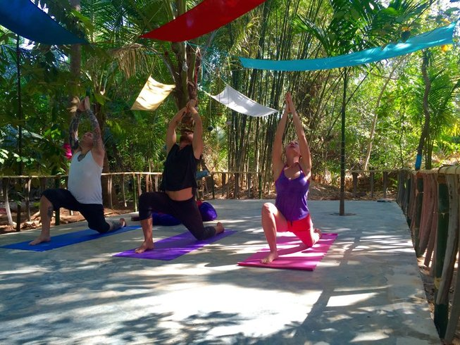 27 Days 200-Hour Hatha Vinyasa Yoga Teacher Training in India