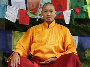 6 Day Tibetan Wellbeing Retreat With Loten Dahortsang in Split
