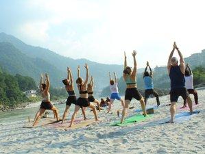 200-Hour Ashtanga Vinyasa Flow Yoga Teacher Training in