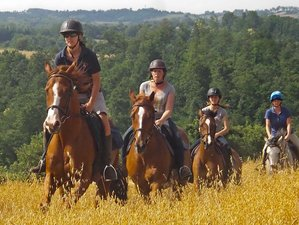8 Day Enchanting Italian Countryside Riding with Lessons in Tuscany