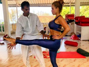 13 Day 100-Hour Intensive Multi-style Yoga Teacher Training in Canacona, Goa