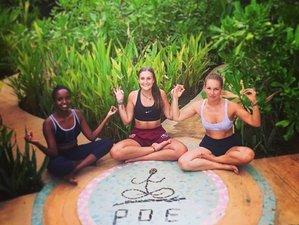 8 Days Transformative Yoga Week at Camp Poe South Coast, Ahangama, Sri Lanka