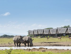 2 Days Ol Pejeta Conservancy Safari in Kenya
