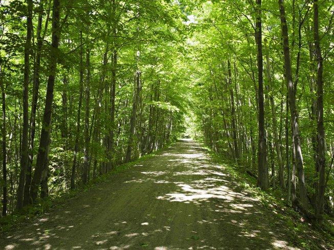 3 Tage Erwachsenen Camp & Yoga Retreat in Caledon, Kanada