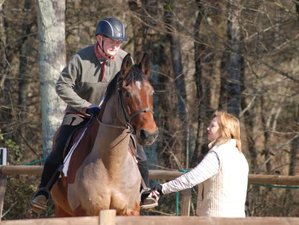 7 Day Individually Tailored Horse Riding Training in Coutras, near Bordeaux