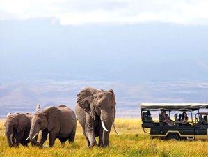 14 Days African Safari Holiday