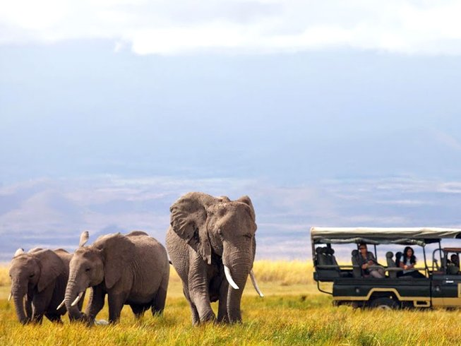 14 Days African Safari Holiday