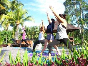 4 Days Wellness and Yoga Retreat in Bali, Indonesia