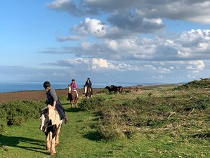 2 Days Exmoor National Park Horse Riding Holiday in England, UK