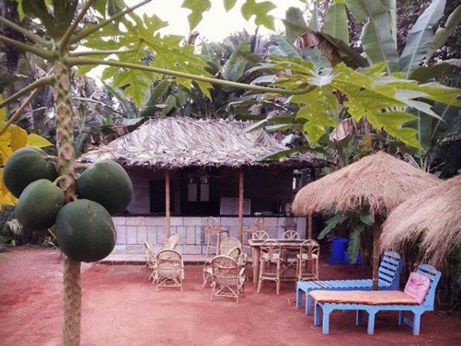 11 Days Meditation and Breathwork Yoga Retreat in Goa