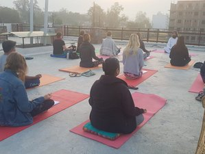 22 Day 200 Hour Yoga Teacher Training in Rishikesh, Uttarakhand