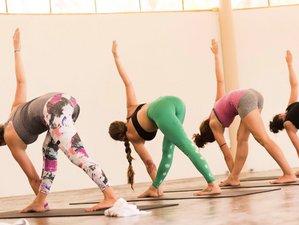 7 Days Intensive Yoga Retreat in Koh Phangan, Thailand