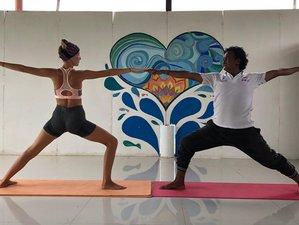 12 Days 100 Hour Aerial and Yin Yoga Teacher Training in Goa, India