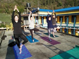 8 Day Yoga and Meditation Tour in Kathmandu, Bagmati Pradesh