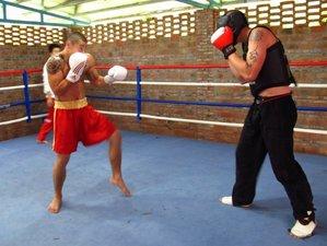 6 Months Learn Kung Fu, Sanda, Taiji in Dali, China