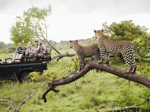3 Days Taita Hills Wildlife Sanctuary and Tsavo East National Park Safari