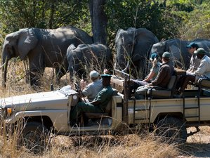 4 Days Affordable Safari in Kafue National Park, Zambia