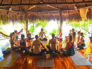 7 Days Panama Paradise Yoga Retreat