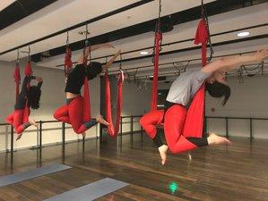 8 Days Aerial Yoga Teacher Training in Kamesznica, Poland