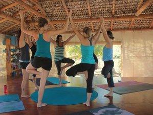 11-Daagse 500-urige Gevorderde Yoga Docentenopleiding in La Paz, Mexico