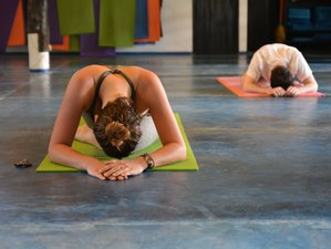 14 Day 100-Hour Yin Yoga Teacher Training in Koh Phangan