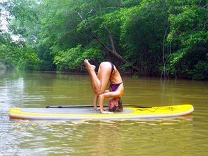 8 Days SUP & Yoga Retreat in Costa Rica