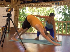 Life-Transforming Guided Course: 200-Hour Online Yoga Teacher Training
