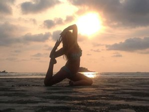 7 Days Clean Body Clear Mind Yoga Retreat in Sri Lanka