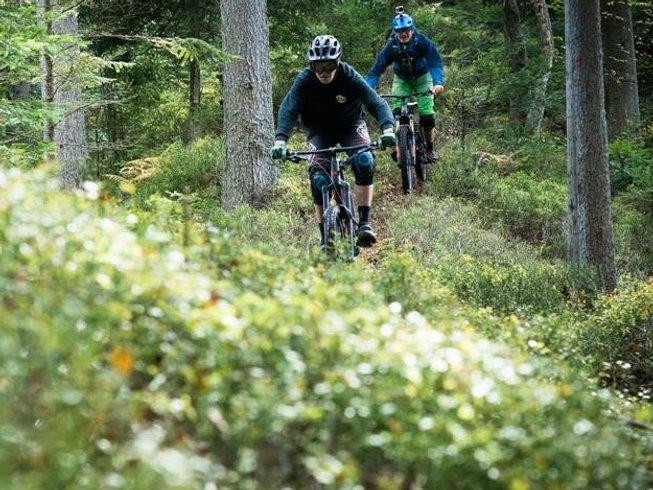 8 Days Mountain Biking and Yoga Retreat in Slovenia