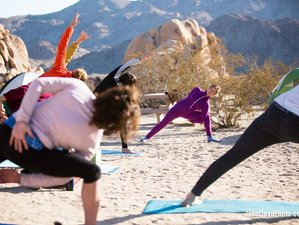 3 Days Weekend Climbing, Camping, and Yoga Retreat in Joshua Tree National Park, California USA