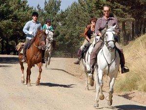 5 Day Poqueira Short Horse Riding Holiday in Alpujarra Granadina, Granada
