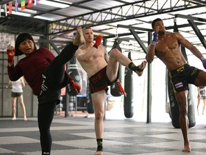 11 Days Muay Thai Camp for Beginners in Chiang Mai, Thailand