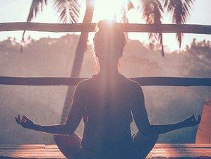 50 Day 300-Hour Virtual Yoga Teacher Training with Shayna Hiller and Deep Kumar