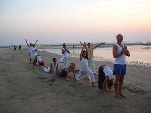 7 Days Chakra Healing and Yoga Retreat India